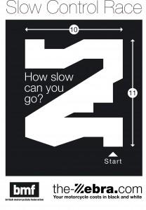 zebra-slow-race