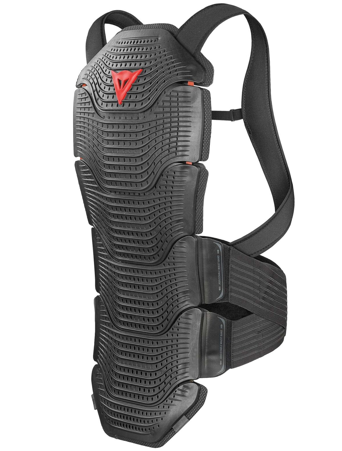 Dainese back protector001