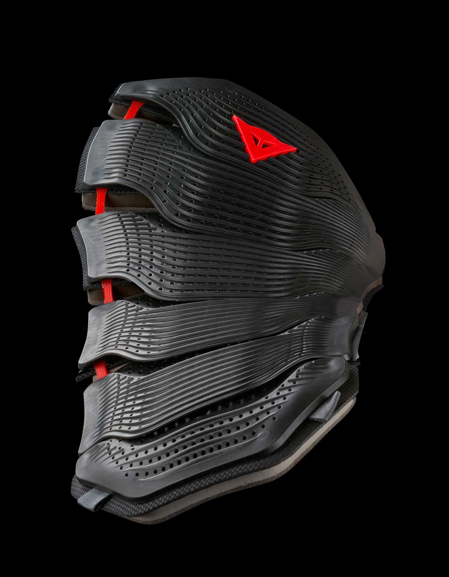 Dainese back protector003