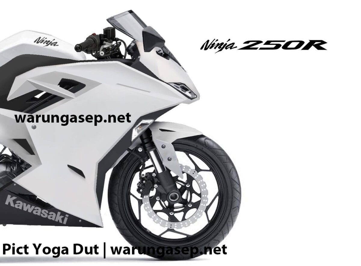 kawasaki-ninja-250r1