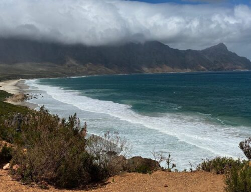 South Africa tour, day 10: Penultimate riding day